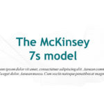 The McKinsey 7s Model Strategies